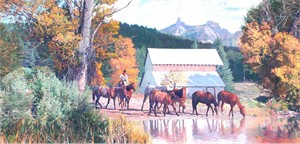 "Tim Cox Artist Hand-signed Open Edition Canvas:""The New Foal """