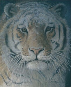 "Robert Bateman Hand-Signed and Numbered Limited Edition Giclee on Canvas: ""Tiger at Dusk"""