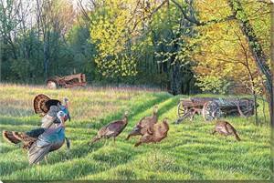 """Jim Kasper Wrapped Canvas:""""Crossroads – Turkeys"""""""