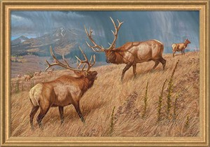 """Lee Kromschroeder Signed and Numbered Framed Canvas Giclee:""""Storm Brewin' – Elk"""""""