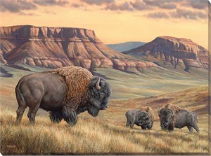 "Rosemary Millette Oversize Gallery Wrapped Canvas Giclee:""Bison Buttes"""