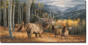 "Rosemary Millette Wrapped Canvas:""Meadow Music – Elk"""