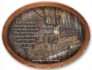 "Michael Sieve Oval Framed Canvas:""Great Eight – Whitetail Deer"""
