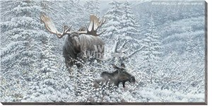 "Michael Sieve Gallery Wrapped Canvas Giclee:""Patient Suitor – Moose"""