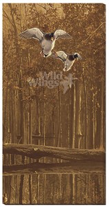 """Scot Storm Gallery Wrapped Canvas Giclee:""""Mallards Over Water"""""""