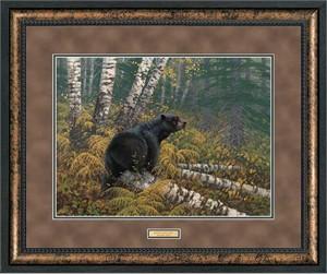 "Michael Sieve Premium Framed Print:""Northwoods-Black Bear"""