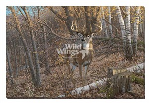 "Michael Sieve Open Edition Gallery Wrap Canvas Giclee:""Great Eight – Whitetail Deer """