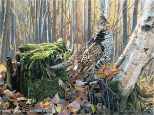 "Jim Kasper Hand Signed and Numbered Limited Edition Print:""Brief Pose – Ruffed Grouse"""