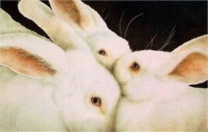 """Will Bullas Fine Art Limited Edition Paper :""""Some Set of Buns"""""""