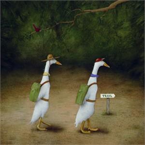 """Will Bullas Fine Art Open Edition Canvas :""""Back Quackers"""""""