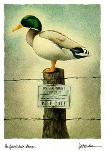 """Will Bullas Fine Art Limited Edition Paper :""""The Federal Duck Stump"""""""