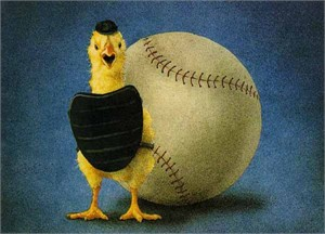 "Will Bullas Fine Art Limited Edition Paper :""Fowl Ball"""