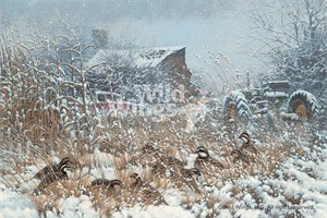 "Michael Sieve Handsigned and Numbered Limited Edition Print: ""Hunkered Down-Bobwhite Quail"""