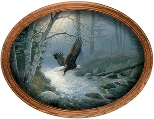 "Persis Clayton Weirs Framed Canvas Oval: ""Spring Run - Bald Eagle"""