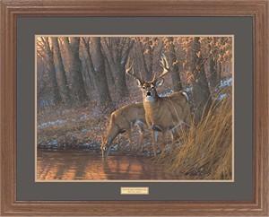 "Michael Sieve Great Northern Art Open Edition Framed Art Print:""Woodland Waterhole-Whitetail Deer"""