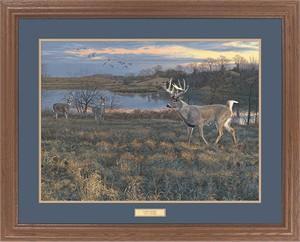 "Scot Storm Great Northern Art Open Edition Framed Art Print:""Last Light"""