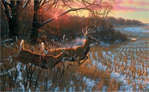 "Michael Sieve Hand Signed and Numbered Limited Edition Premier Canvas Giclee:""Red Alert-Whitetail Deer"""