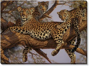 "Lee Kromschroeder Oversize Open Edition Gallery Wrap Canvas:""The Family Tree – Leopards"""