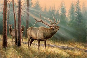 """Rosemary Millette Hand Signed and Numbered Limited Edition Print:""""Answering the Call—Elk"""""""