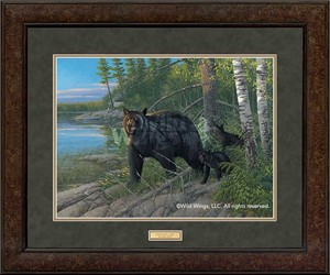"Michael Sieve Open Edition Premium Framed Print: ""Boundary Camp – Black Bears"""