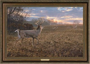"Scot Storm Framed Limited Edition Artist Proof Canvas Giclee:""Into The Light - Whitetail Deer"""