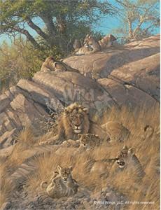 """Michael Sieve Limited Edition Premier Giclée Canvas:""""Family Pride – Lions"""""""