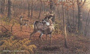 "Michael Sieve Limited Edition Premier Giclée Canvas:""Fall Rut – Whitetail Deer"""