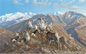 "Michael Sieve Limited Edition Premier Giclée Canvas:""Stone Kings – Stone Sheep"""