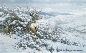 "Michael Sieve Handsigned and Numbered Limited Edition Canvas Giclee: ""White Silence-Mule Deer"""