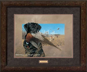 "Michael Sieve Open Edition Frame Art: ""Great Bird Dogs – Black Lab"""