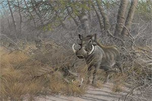 "Michael Sieve  Hand Signed and Numbered Limited Edition Canvas Giclee:""Warts & All-Warthogs"""