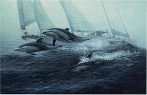 """Randall Scott Limited Edition Print: """"Bow Riders-Pacific White sided Dolphins"""""""