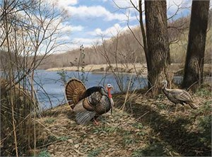 """David A. Maass  Hand Signed and Numbered Limited Edition:""""Zumbro Valley Courtship"""""""