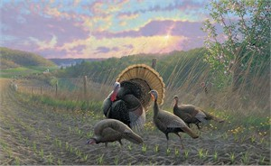 "Michael Sieve  Hand Signed and Numbered Limited Edition Print:""Golden Fan Club-Turkeys"""