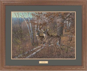"Michael Sieve Framed Hand Signed and Numbered Limited Edition:""Acute Pair-Whitetail Deer """