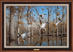 """David Mass Hand Signed and Numbered Limited Edition Canvas: """"Heart of the Timber"""""""