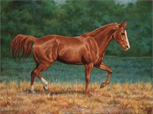 """Chris Cummings Limited Edition Print: """"That's My Horse - Sorrel"""""""