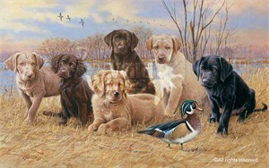 "Jim Killen Handsigned and Numbered Limited Giclee on Canvas: ""Marsh Madness-Puppies"""