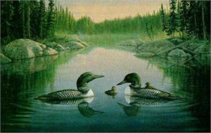 "Sam Timm Limited Edition Print: ""North Country Loons"""