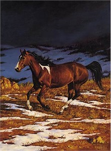"""Chris Cummings Limited Edition Print: """"Approaching Storm-Front Runner (Left)"""""""
