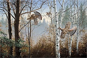 "David Maas Limited Edition Print: ""Three Birds Up- Ruffed Grouse"""