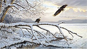 "Persis Clayton Weirs Limited Edition Print: ""Winter Majesty - Bald Eagles"""