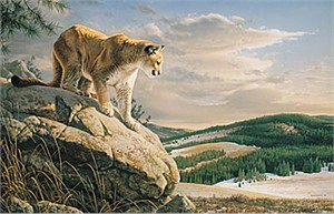 "Jim Hautman Limited Edition Print:""Vantage Point - Cougar"""