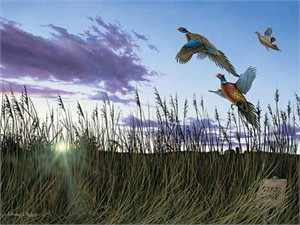 "Anthony J. Padgett Handsigned and Numbered Limited Edition Print:""Morning Glory-Pheasants"""