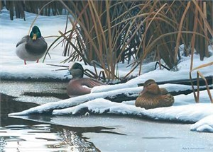 "Peter Mathios Handsigned and Numbered Limited Edition:""Winter Hideaway-Mallards"""