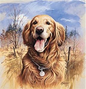 "Jim Killen Open Edition Print:""That's My Dog - Golden """
