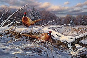 "Rosemary Millette Hand Signed and Numbered Limited Edition Canvas Giclee:""Beyond The Storm-Pheasant"""