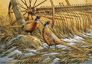 "Rosemary Millette Limited Edition Print:"" Heartland-Pheasants  """