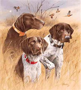 "Jim Killen Limited Edition Print:Great Hunting Dogs: ""German Short Hair"""