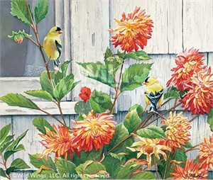 "Susan Bourdet Original Watercolor Painting:""Cottage Window-Goldfinch"""